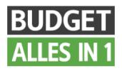 logo Budget Alles-in-1